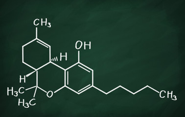 Structural model of THC molecule on the blackboard.