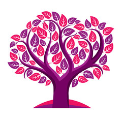 Art vector illustration of tree with purple leaves, spring seaso