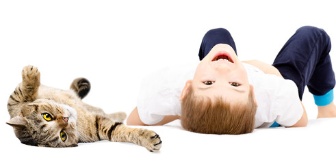 Portrait of a cheerful boy and cat Scottish Straight lying on its back