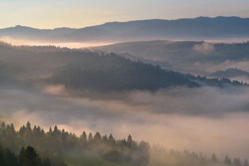 Beautiful fog on the Pieniny mountain hill