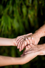 close up of young woman hand holding with tenderness an elderly senior person hands