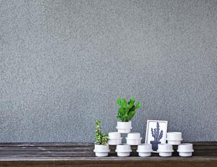 Cactus, succulent and flowerpots on the shelf against concrete wall.