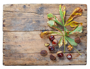 Fruits and leaves of horse chestnut on old wooden table..Isolated on white background.