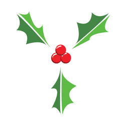 Vector of Holly berry leaves for Christmas