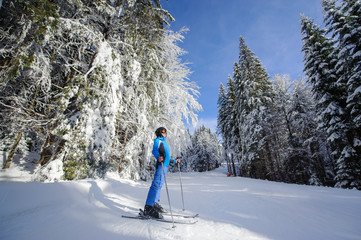 Wide low point of view shot of happy skier on a ski slope in the forest with big beautiful trees covered in snow. Winter sports concept. Carpathian Mountains, Bukovel, Ukraine