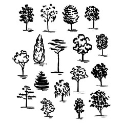Set of hand drawn of trees. Ink style.