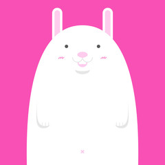 cute big fat white rabbit on pink background