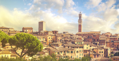 Beautiful view of the historic city of Siena, Italy.Retro,vintage image