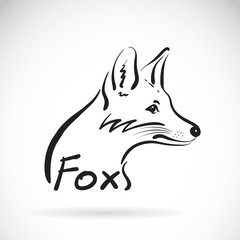 Vector of hand sketch a fox on a white background. Animal design