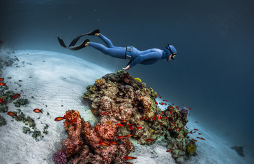 Wall Mural - Freediver gliding underwater over vivid coral reef
