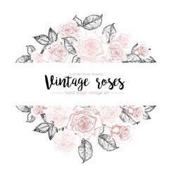 Vector hand drawn template illustration of roses isolated on white background. Vintage pastel flowers engraved