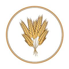 Wheat icon design element. Vector. Isolated illustration.