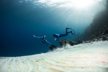 Wall Mural - Two freedivers finning over the sandy sea bottom