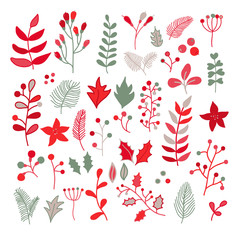 Christmas floral vector drawing set with holly, poinsettia, mist