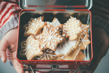 Christmas cookies in a child lunch box