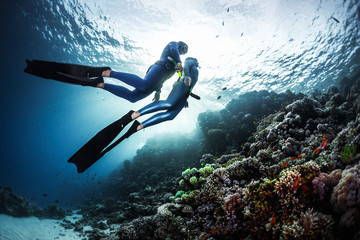 Wall Mural - Two freedivers swimming underwater over vivid coral reef. Red Sea, Egypt