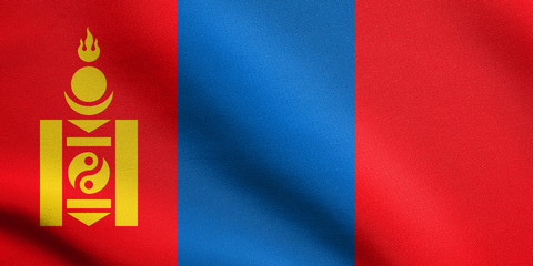 Flag of Mongolia waving with fabric texture