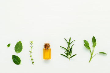Bottle of essential oil with  fresh herbal sage, rosemary, thyme