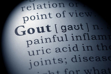 Dictionary definition of gout