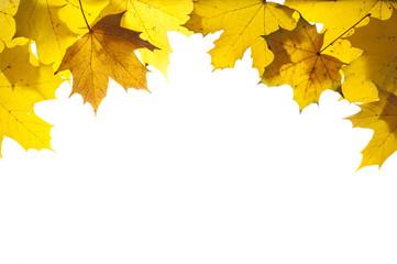 Herbst und Herbstlaub mit Blätter als Rahmen