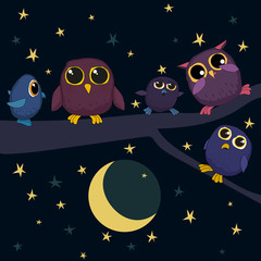 cute owls are sitting on the branch at night