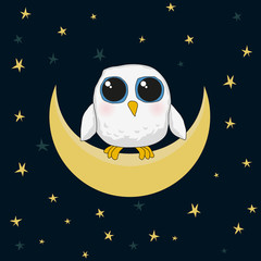 white cute owl are sitting on the moon at night