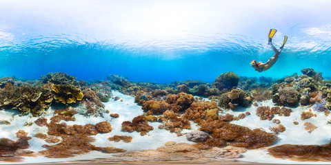 Spherical, 360 degrees, seamless panorama of the lady freediver exploring the sea floor with corals