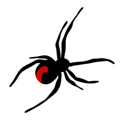 halloween spider vector symbol icon design.