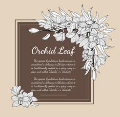 Cymbidium Orchids card vector on brown background.Cymbidium Orchids card by hand drawing.