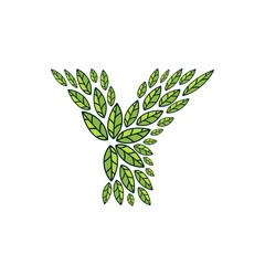 Y letter logo formed by vintage pattern, line green leaves.