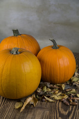 Orange Pumpkins with leaf as a symbol of Autumn and Halloween