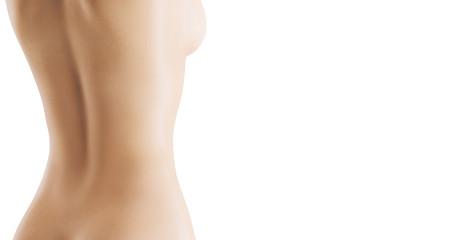 Schiena nuda render di donna bianca