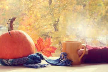 warm cozy atmosphere of golden autumn/ Hand with cup and pumpkin against the window with drops after the rain