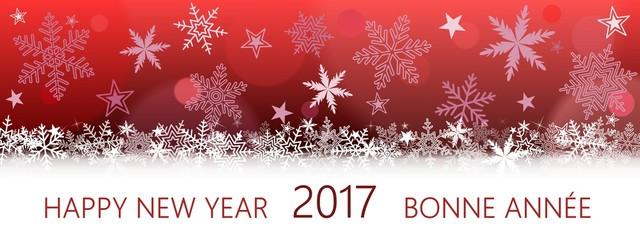 Happy New Year 2017 Bonne Année. (r)