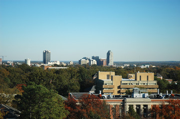 high angle view of Raleigh with downtown skyline