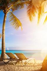 Art tropical sea beach; vacation at the Palms Resort
