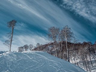 Fototapete - Beautiful winter landscape of Mountains