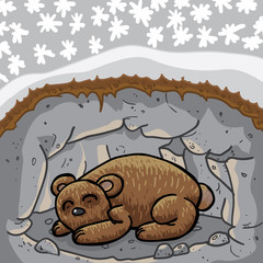 Cute sleeping bear in lair / cave. The season outside is winter. High quality vector illustration.