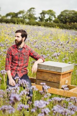Beekeeper sitting on beemate