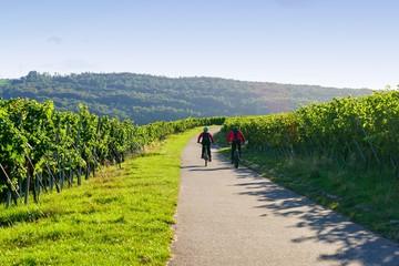 Mountainbiken in den Weinbergen