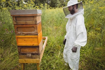 Beekeeper looking at beehive in a field