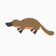 Vector illustration with cartoon platypus icon.