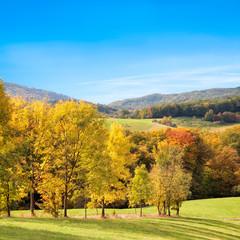 Herbstlandschaft vor blauem Himmel