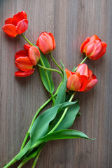 Picture of tulips. Red flowers bouquet, stil life.