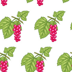 Seamless pattern with Red currant berries