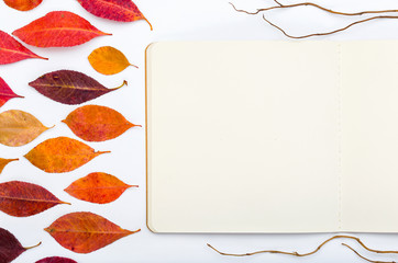 Open notepad with autumn leaves on a white background