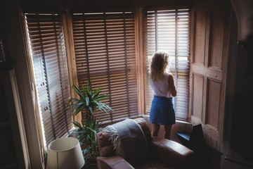 Rear view of woman looking through window in living room