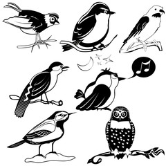 Black vector collection of different birds