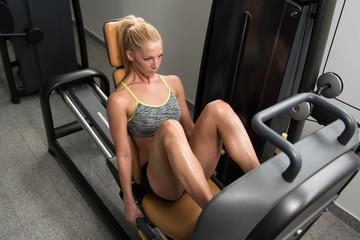 Health Club Leg Press Machine