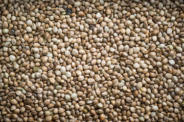 Close up view on hemp seeds